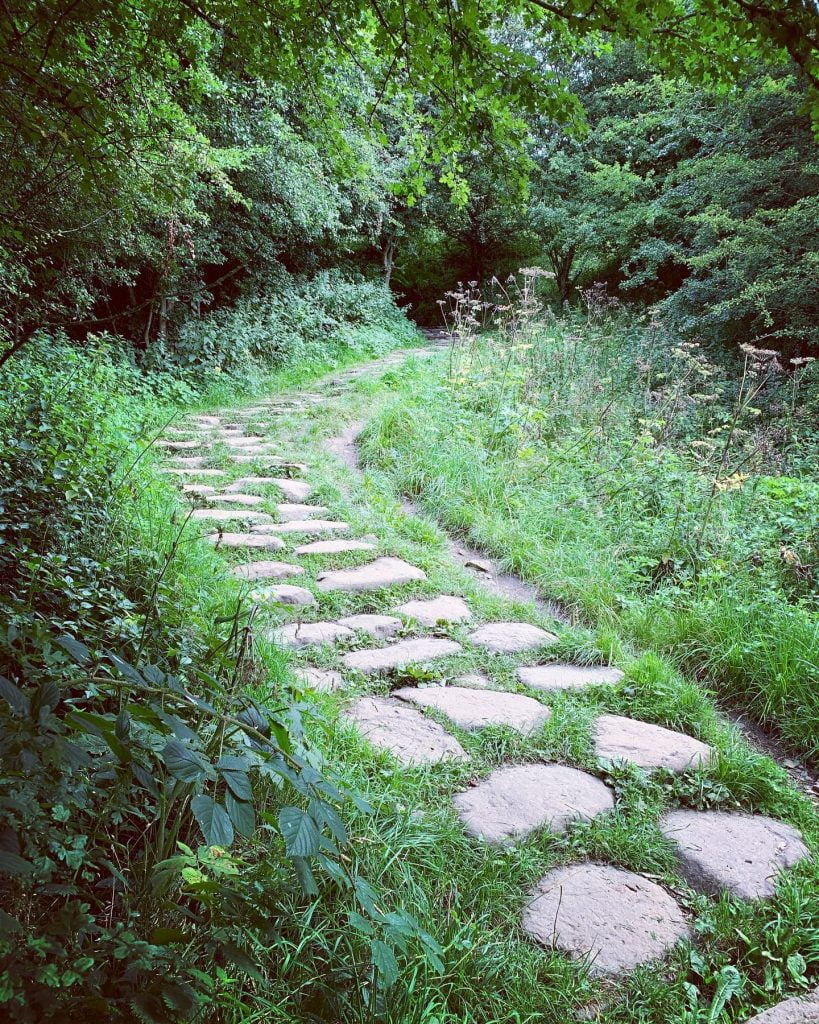 Stone Steps leading to the forest path to Hareshaw Linn Waterfall.