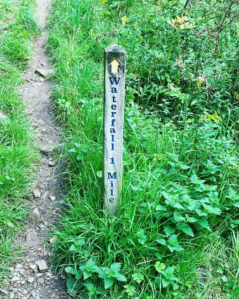 The path along side Hareshaw Burn running down from Hareshaw Linn Waterfall North Tyne river.