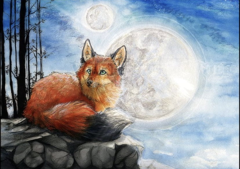 Fox and Full Moon