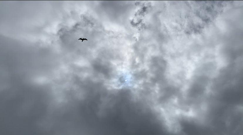 Solar Eclipse – June 2021